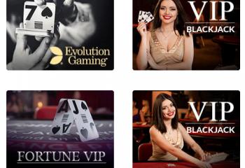 Casino en vivo Dingo